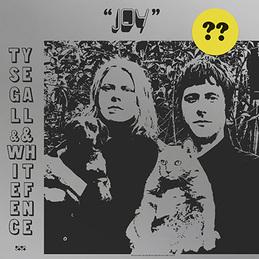 Afbeeldingsresultaat voor Segall, Ty & White Fence-Joy