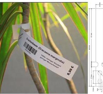 3006305 Zebra Thermal Transfer Polyolefin 180 micron tag