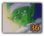 Piccolo (36)