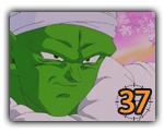 Piccolo (37)