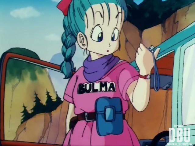 bulma-db-001