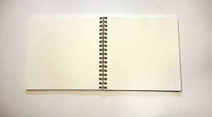 journal open to blank pages