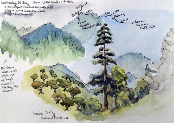 A line and wash painting of two scenes in Shasta National Forest.