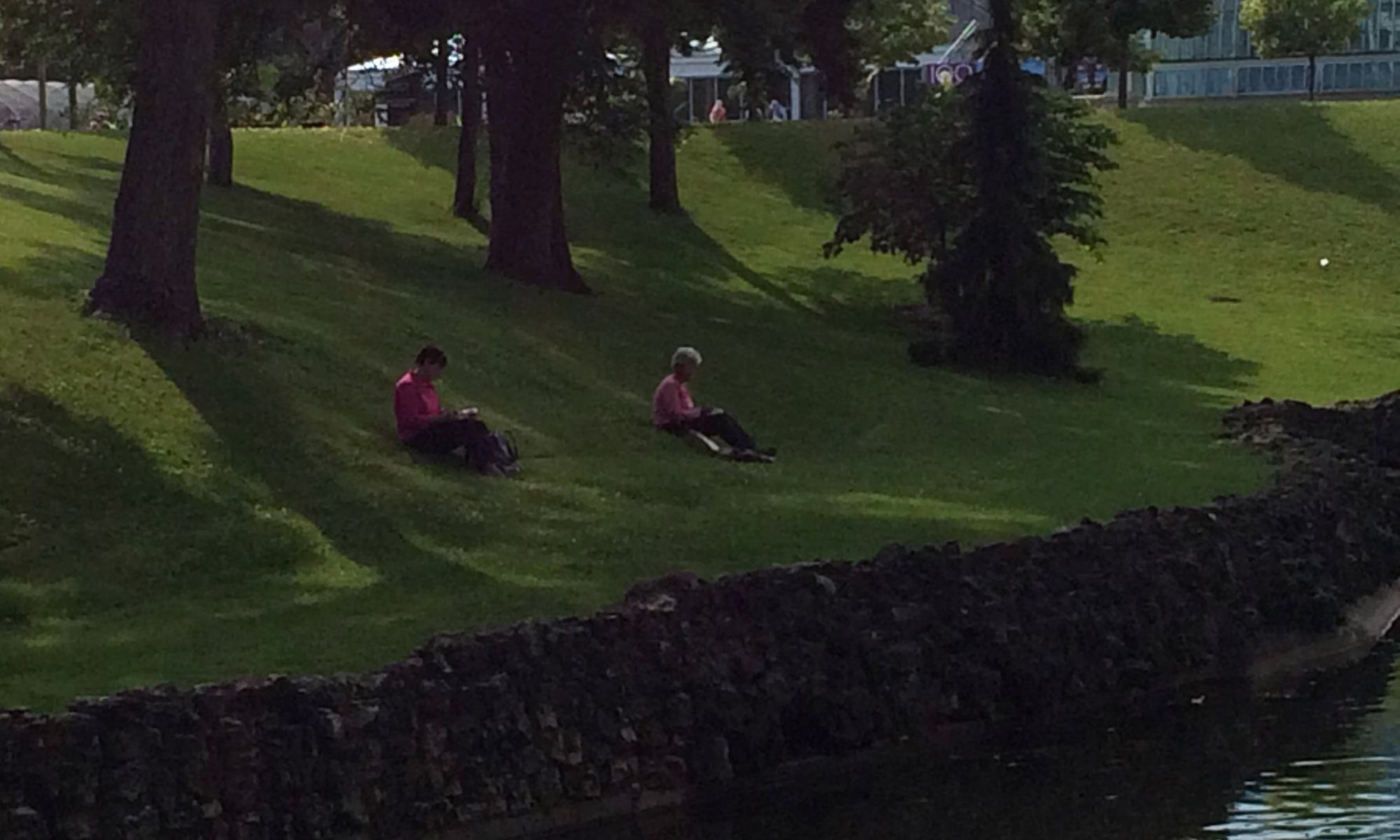 Sketchers by the pond at Como Conservatory.