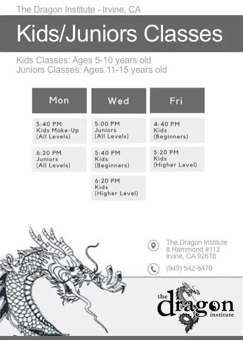Irvine Kids Martial Arts