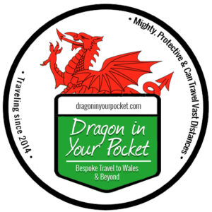 Dragon in Your Pocket Logo