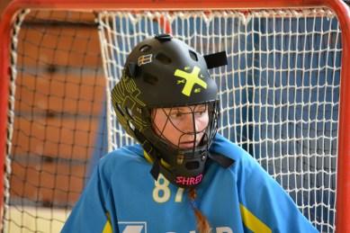 Unihockey Giswil Dragons 2016_181