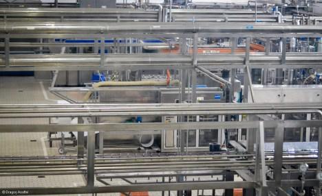 vizita-fabrica-danone-28