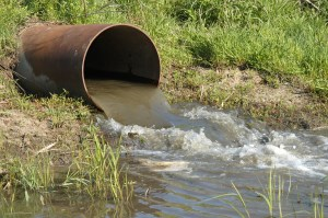"The ECO Report from Ms. Saxe includes the following, ""Despite decades of work to reduce the environmental hazards of combined sewers, in 2017-2018 Ontario had 766 combined sewage overflows."