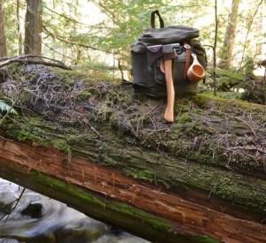 survival bushcraft