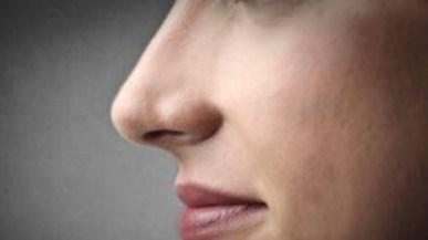 Ηλεκτρονική «μύτη»