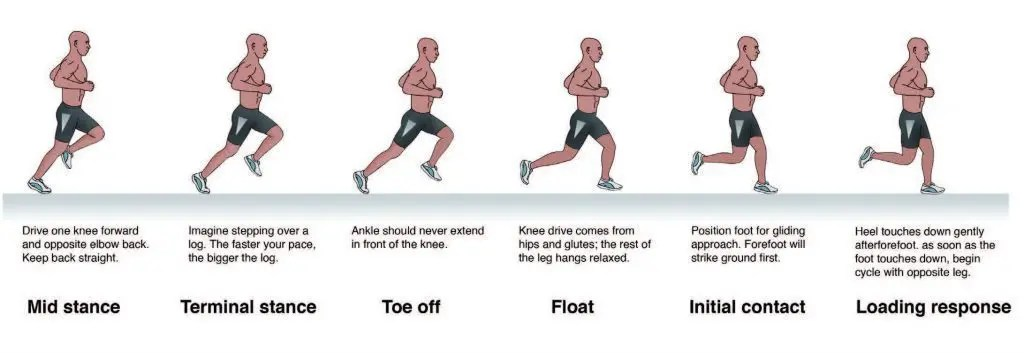 Phases of Running - El Paso Chiropractor