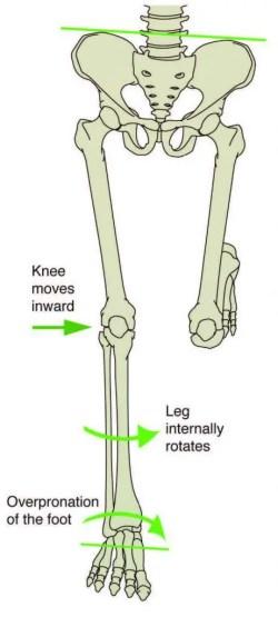 Fase postura Cadena Cinética - El Paso Quiropráctico