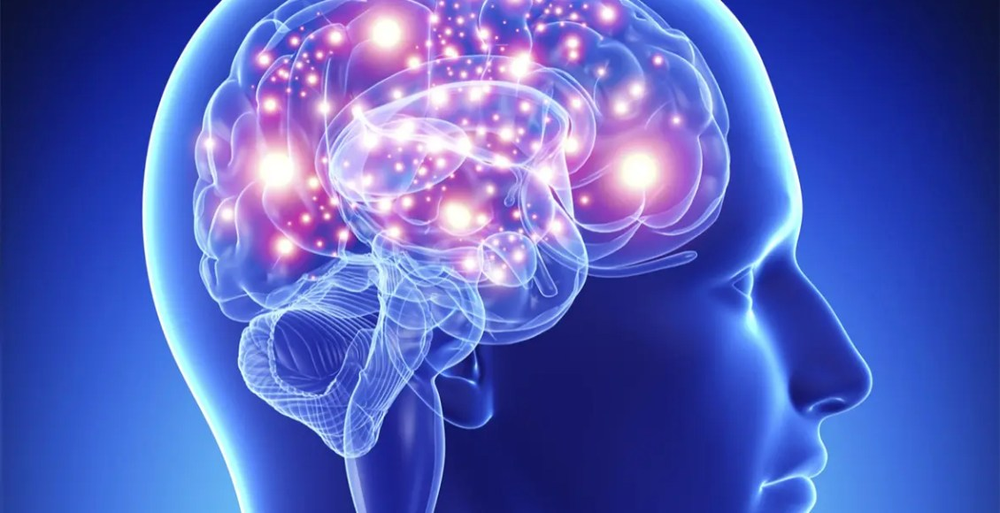 SCI neuronas disparando