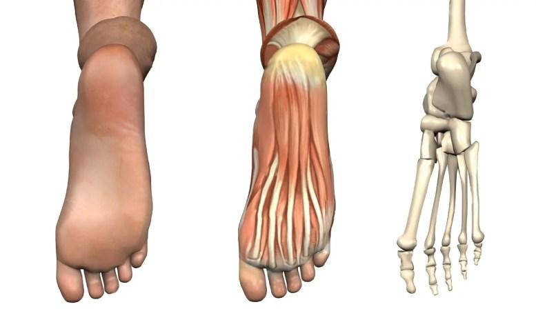 11860 Vista Del Sol Ste. 128 Chiropractic Orthotics for Heel and Foot Pain & El Paso, Texas