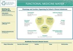 functional medicine Functional Medicine Matrix