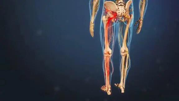 vía del nervio ciático