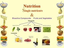 dietary Nutrition single nutrient