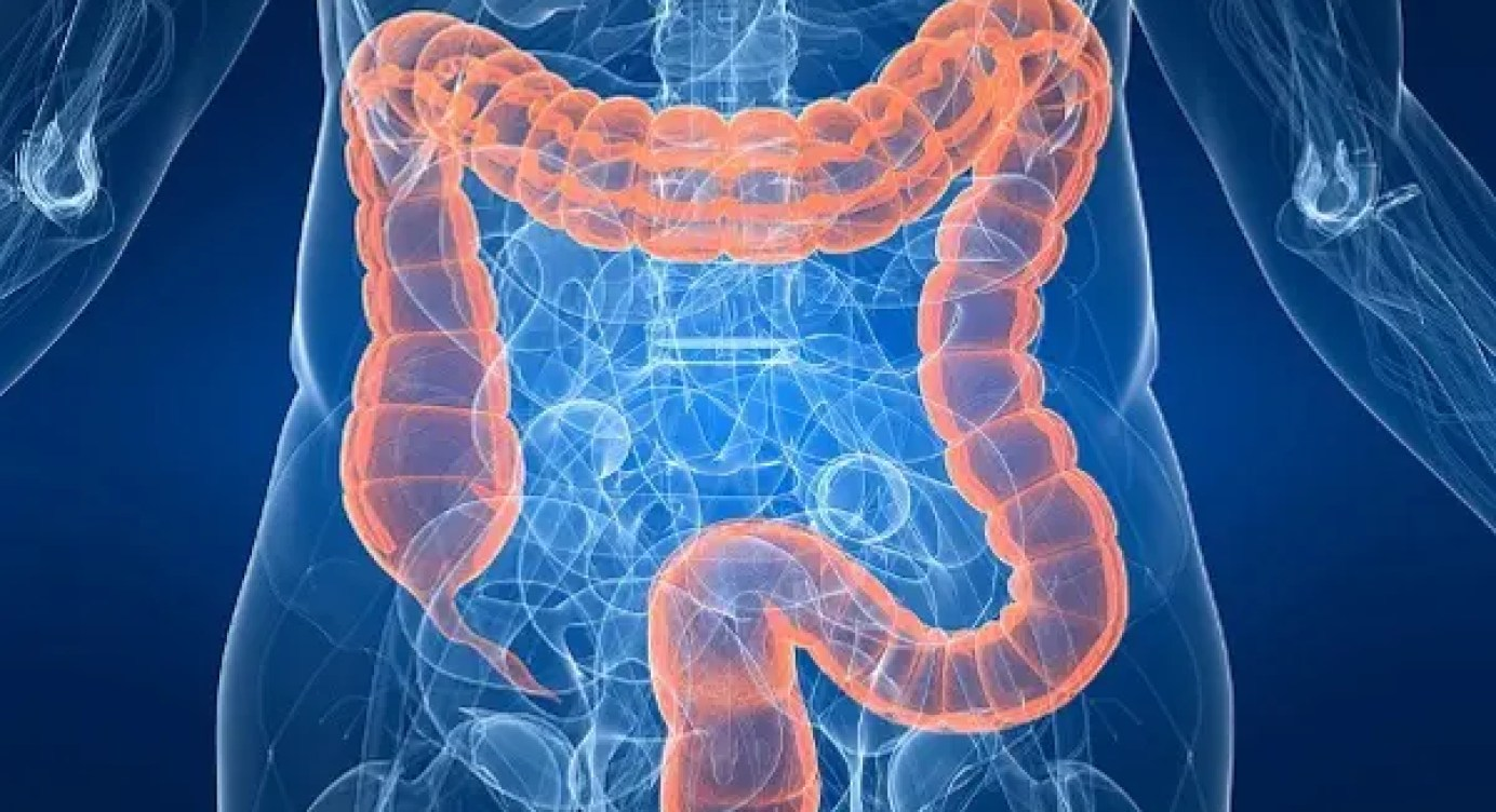 What Are Gastrointestinal Diseases El Paso Tx Chiropractor