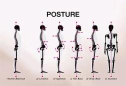 especialista em tratamento de dor nas costas