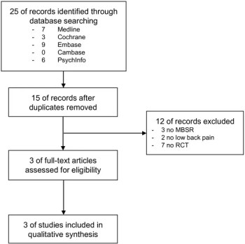 Figure 1 Flowchart of the Results of the Literature Search