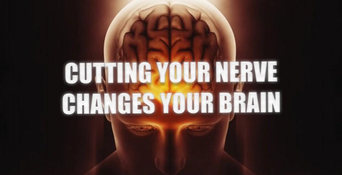 нерв эль-пасо tx.