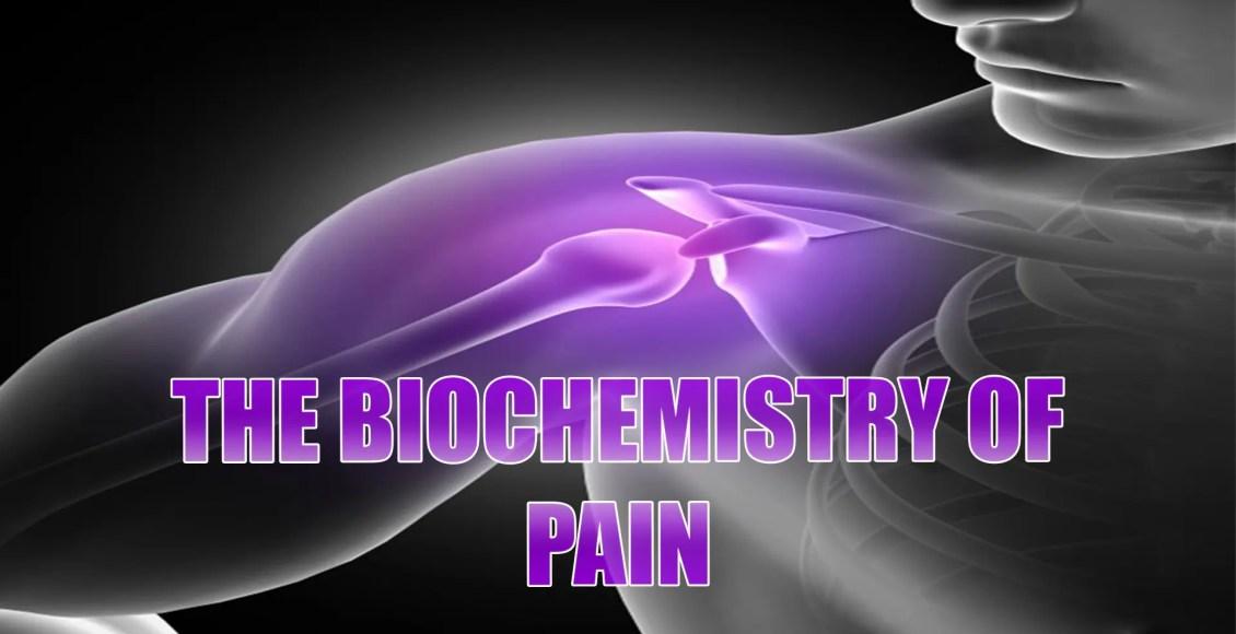 bioquímica da dor el paso tx.