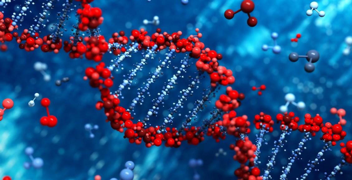 Il ruolo della metilazione Adaptogens | Chiropratico di El Paso, TX