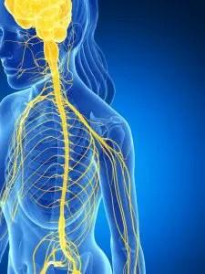 11860 Vista Del Sol, Ste. 128 Low Back pain fix with *FOOT ORTHOTICS* | El Paso, Tx