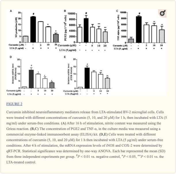 Figura 2 Mediadores neuroinflamatorios inhibidos por la curcumina | Quiroprácticos en El Paso, TX