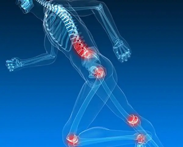 11860 Vista Del Sol, Ste. 128 Multiple Traumas and Chiropractic Injury Rehabilitation