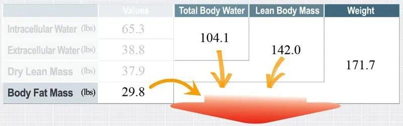 11860 Vista Del Sol, Ste. 128 Comprender la diferencia entre pérdida de peso y pérdida de grasa
