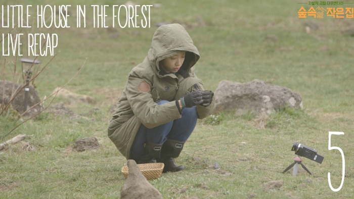 Live Recap for episode 5 of Little House in the Forest Starring So Ji-sub and Park Shin-hye