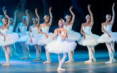El lago de los cisne, renace a una bailarina con Alzheimer
