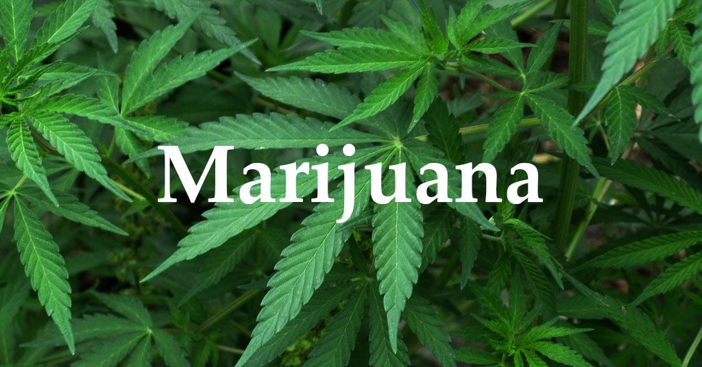 Advantages and Disadvantages of Marijuana