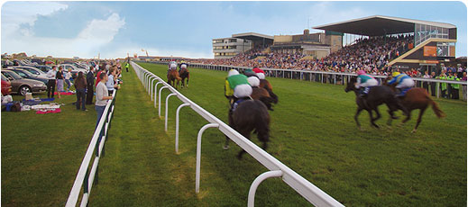Image result for BATH RACES