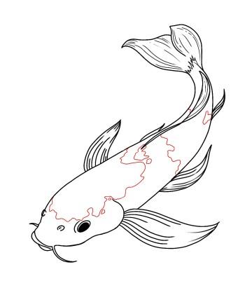 How To Draw Koi Fish Step 9