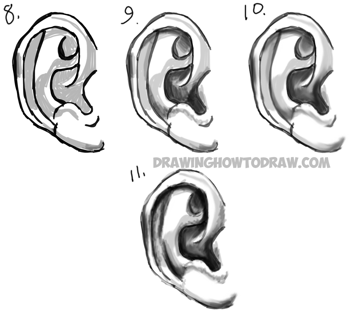 Learn How To Draw Ears And How To Shade Them Drawing And