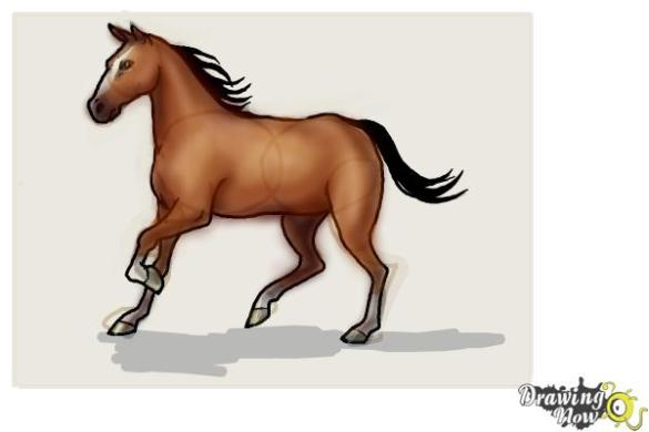 How to Draw a Horse Step by Step   DrawingNow Step 10   For the coloring part you can use two shades of brown for his  body to give your horse a more realistic look