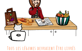 La notice des légumes // Drawings and things
