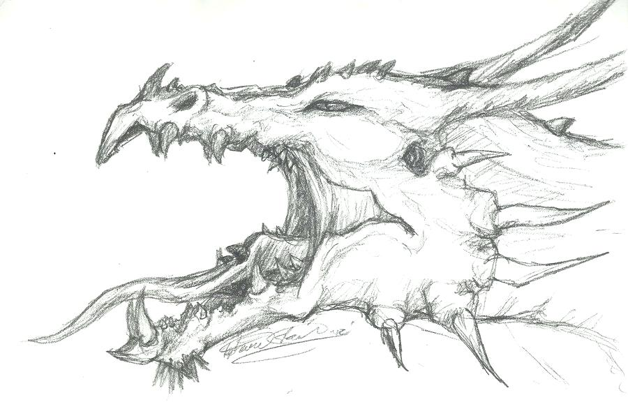 Dragon Head Drawing High Quality Drawing Skill