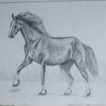 Horse Drawing Pencil Sketch Colorful Realistic Art Images Drawing Skill