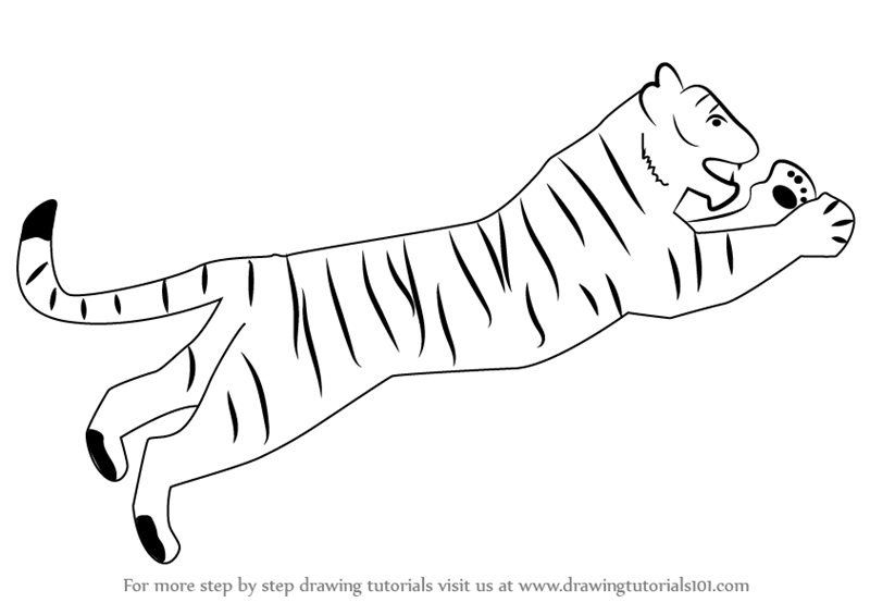 Learn How To Draw A Tiger For Kids Big Cats Step By Step Drawing Tutorials