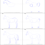 How To Draw A Horse Printable Step By Step Drawing Sheet Drawingtutorials101 Com