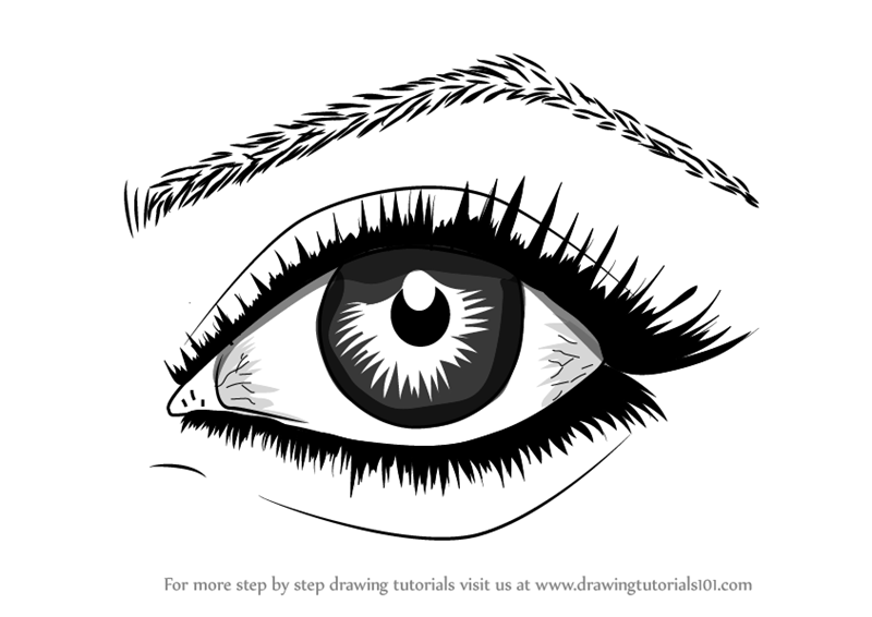 Step by Step How to Draw Realistic Eyes With Pencil ...