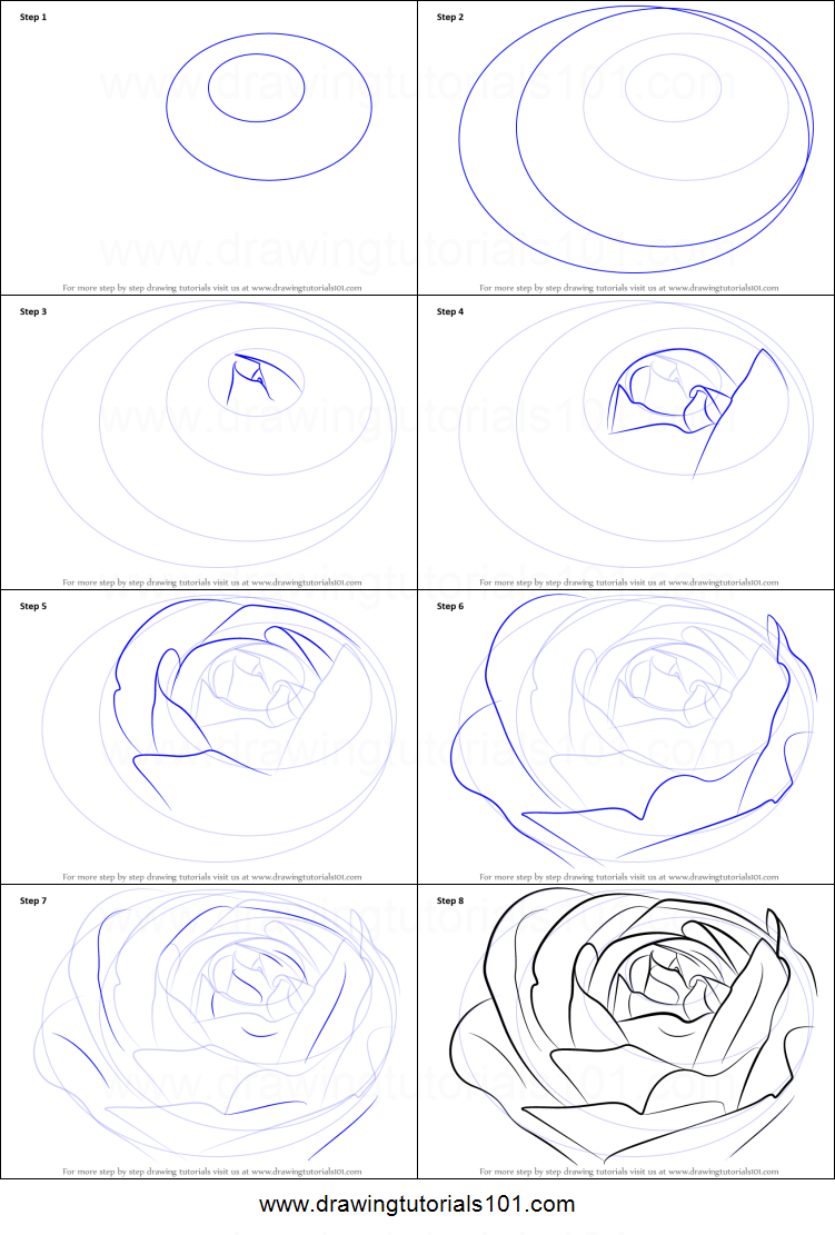 How to draw a rose up close howsto how to draw a rose bud printable step by drawing sheet ccuart Image collections
