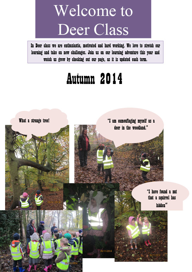 Autumn 2014 website entry-1