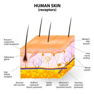 Acne Treatment And Prevention  Dr Batul Patel (MD