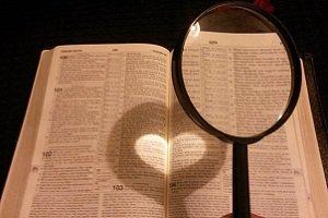 Biblical Insight