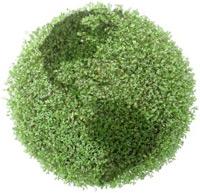 earth-green